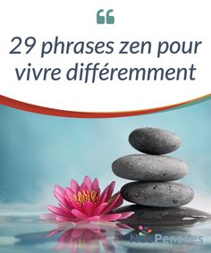 Zen philosophy originates from the beginning of the first century, when Chinese thought came into contact with the basic principles of Hinduism, Meditation For Beginners, Daily Meditation, Frases Zen, Zen Yoga, Transform Your Life, Dalai Lama, Positive Attitude, Health, Reiki