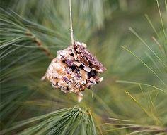 Simple Pine Cone Bird Feeders