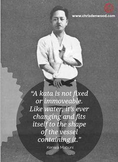 Shito Ryu Karate, Goju Ryu Karate, Isshin Ryu, Kempo Karate, Self Defense Moves, Ip Man, Black Belt, Martial Arts, Samurai