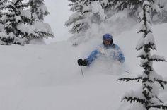 Pow in the Selkirks - Canada Ski And Snowboard, Skiing, Canada, Outdoor, Ski, Outdoors, Outdoor Games, The Great Outdoors