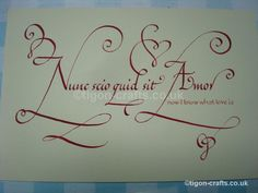 """Nunc scio quid sit amor"" – Latin for, ""Now I know what love is."" I'd like to get this quote as a tattoo =)"