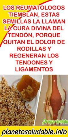 LOS REUMATÓLOGOS TIEMBLAN, ESTAS SEMILLAS LA LLAMAN LA CURA DIVINA DEL TENDÓN, PORQUE QUITAN EL DOLOR DE RODILLAS Y REGENERAN LOS TENDONES Y LIGAMENTOS #REUMATÓLOGOS #SEMILLAS #TENDÓN #RODILLAS #LIGAMENTOS #BIENESTAR #REMEDIOS #SALUD Health Remedies, Home Remedies, Natural Remedies, Natural Medicine, Herbal Medicine, Medicinal Plants, Diet And Nutrition, Natural Health, Quinoa