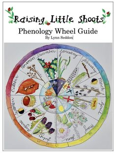 Announcing The New Phenology Wheel Guide!