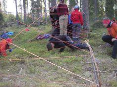 Metsässä voi oppia paljon muutakin kuin pelkästään erätaitoja. Ryhmädynamiikkaharjoitteet tuovat mukavaa ja ajatuksia herättävää vaihtelua retkeilyyn. Dynact - Google+