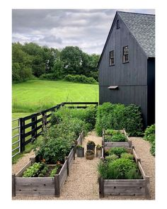 5 things Friday - Sights of Spring.Gardens - Pure Collected Living 5 things Friday - Sights of Sp Potager Garden, Veg Garden, Vegetable Garden Design, Garden Cottage, Vegetable Gardening, Farmhouse Garden, Veggie Gardens, Terrace Garden, Organic Gardening