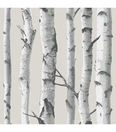 Brewster Home Fashions 'Birch Tree' Peel & Stick Vinyl Wallpaper Vinyl Wallpaper, Birch Tree Wallpaper, Grey Wallpaper, Self Adhesive Wallpaper, Wallpaper Roll, Peel And Stick Wallpaper, Embossed Wallpaper, Scenic Wallpaper, Sticky Wallpaper