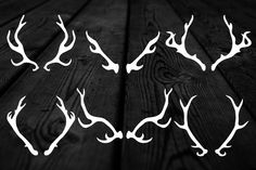 Check out Hand drawn deer antlers by lunalexx on Creative Market