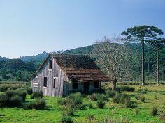 Countryside in the city, Rio Grande do Sul