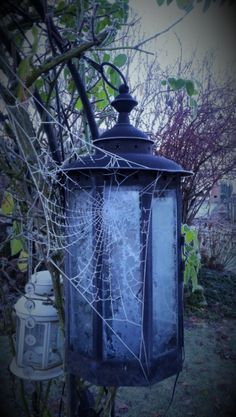 Eisiges Netz an der Laterne. Foto: S. Hopp