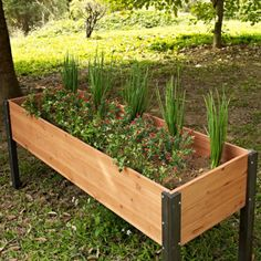 Choose the best place to plant your garden with this Elevated Outdoor Raised Garden Bed Planter Box - 70 x 24 x 29 inch High. Crafted from beautiful and durable wood with strong and sturdy legs, this