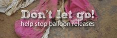 Read the Marine Conservation's information on the harm caused to marine wildlife by balloon and lantern releases