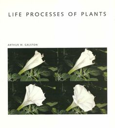 #LIFEPROCESSESOFPLANTS  by #GALSTON
