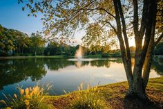 Fountain and pond at Roosevelt Wilson Park at sunset, in Davidson, North Carolina. | Mounted Photo Print, Stretched Canvas, Metal Print Home Decor Wall Art.