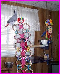 Dog Pull Toys (Dollar Store) Baby Rings (or zip ties) How easy is this! The  possibilities are endless.