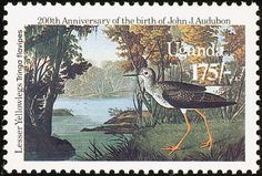Lesser Yellowlegs stamps - mainly images - gallery format