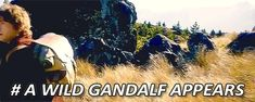 The only way to catch a wild Gandalf is if you have a Hobbit in your team. (gif)