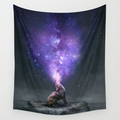 All Things Share the Same Breath (Coyote Galaxy)<br/> Color(s): Dark Mono Sky with Purple, Pink, Blue Galaxy…