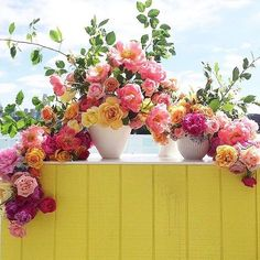 These flowers by are UNREAL! I imply…these colours 😱😍💗💛💗💛💗💛 Rooftop Garden, Flower Centerpieces, Brighten Your Day, Floral Arrangements, Beautiful Flowers, Wedding Flowers, Floral Design, Floral Wreath, Colours
