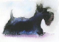 Scottish Terrier Dog Matt Art Print Scottie Dog by ArchyScottie