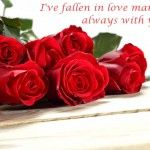 Beautiful Rose Day Messages Greetings for Bf & Hubby