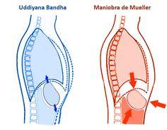Pranayama, Ashtanga Yoga, Tantra, Yoga Meditation, Relax, Mindfulness, Awareness Ribbons
