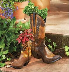 Recycled cowboy boots for planter.