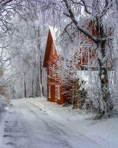 Norway 🇳🇴 Winter Wonderland