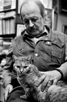 From a book shop in Bucharest. Bucharest, Animals Of The World, My Photos, Cats, Books, Photography, Livros, Gatos, Libros