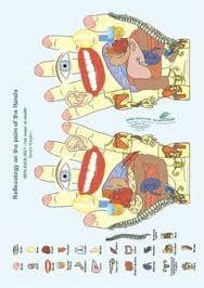 Risultati immagini per REFLEXOLOGY the Maps of Health Ewald Kliegel