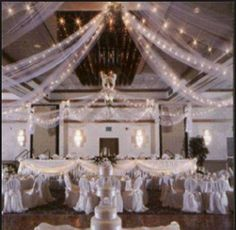 Which Wedding Website Is Best Code: 4841373026