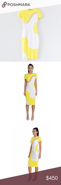 ✨NEW ARRIVAL✨ Graphic Colorblock Fitted Dress PRODUCT DESCRIPTION: A graphic color-blocked dress cut from a rich wool-blend to an elegant pencil silhouette and enlivened with flashes of lemon-yellow and white. The darted bodice is accented with a sheer silk-organza curved insert - a very contemporary day to evening option.   DETAILS: • Round bias-bound neckline • Full-length two-way zip fastening through back that can be adjusted to create a split  • Fully lined   CARE INSTRUCTIONS: • Dry…