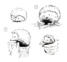 hedgehog_art02.jpg 699×651 pixels