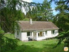 Peaceful Cosy 'home-from-home' Drumguish by Kingussie - Kingussie Cosy, Bungalow, Acre, Woodland, Porch, Shed, Easter, Outdoor Structures, Cabin