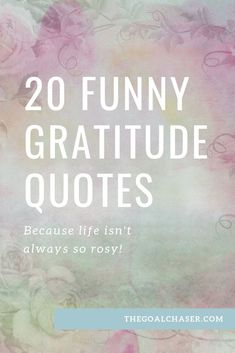 20 Funny Gratitude Quotes & Memes - Because Life Isn't Always Rosy...