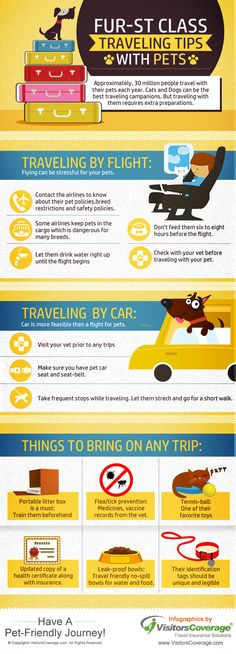 Infographics: Traveling with Pets? Here are some #travel #tips for #travelers #traveling with #Pets... #travelwithpets #travel #airtravel #travelingwithpets
