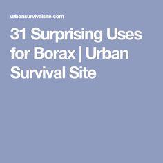 31 Surprising Uses for Borax | Urban Survival Site