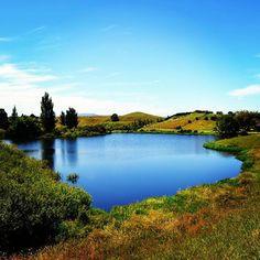 Hobbiton, Nueva Zelanda ahora en el blog! Volimteblog.blogspot.com  #newzealand #hobbiton