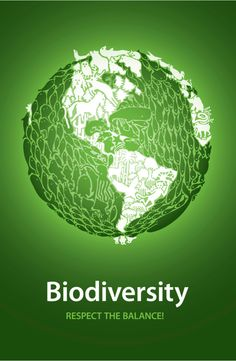 Biodiversity concept poster from American continent point of view. Easy to edit vector illustration in terms of layers and colors. Simple gradients, no transparency effects. Diversity Poster, Ocean Day, World Environment Day, Types Of Resources, The Lives Of Others, Oceans Of The World, International Day, Point Of View, Graphic Design Inspiration
