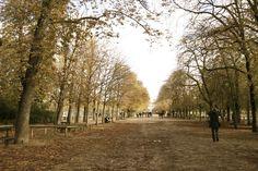 un paseo por Paris..