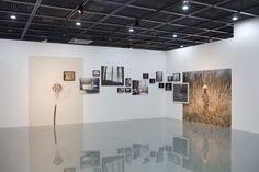 "View of the exhibition ""Gaijin"" , Daegu Photo Biennale 2012, South Korea. By David Favrod"