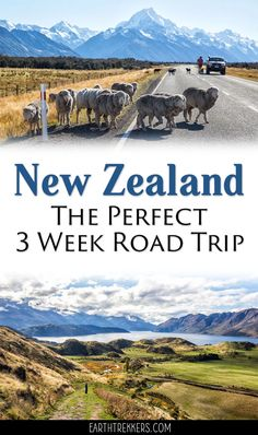 New Zealand Itinerary and Road Trip Guide. Spend 3 weeks in New Zealand visiting the North and South Islands: Auckland, Hobbiton, Waitomo Caves, Tongariro Alpine Crossing, Wellington, Abel Tasman, Kaikoura, Banks Peninsula, Mt Cook, Wanaka, Roys Peak, Queenstown, and the Milford Sound. #newzealand #travelitinerary #roadtrip #bucketlist