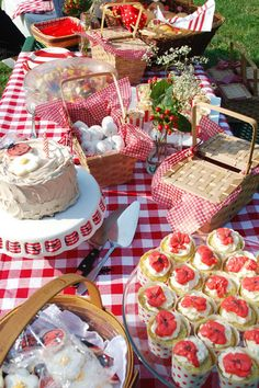 A picnic basket theme was used, along with red and white checkered tablecloths, and a few fun ladybugs.