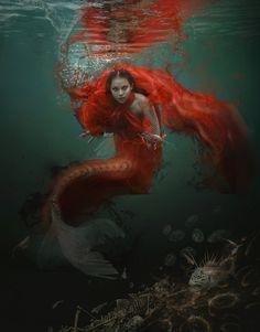 """Blood Zodiac. Pisces"" de Vasylina Holodilina"