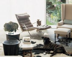 Interior Design with Pups in Mind | A Design Lifestyle - Jacqueline Palmer