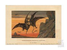 Print of Pterodactylus, extinct genus of pterosaurs Prehistoric World, Prehistoric Animals, Fine Art Prints, Framed Prints, Canvas Prints, Dinosaur Pictures, Extinct Animals, Antique Prints, Art Reproductions