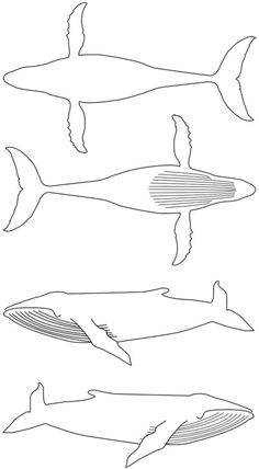 Humpback Whale Art Print by The Sea or You   Society6