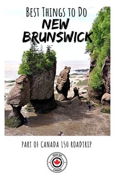 Visiting New Brunswick? This is your ultimate guide to the best things to do in New Brunswick, including hikes, restaurants, natural attractions, and more! Scotland Travel, Ireland Travel, Cool Places To Visit, Places To Go, Stuff To Do, Things To Do, New Brunswick Canada, East Coast Travel, Beautiful Waterfalls