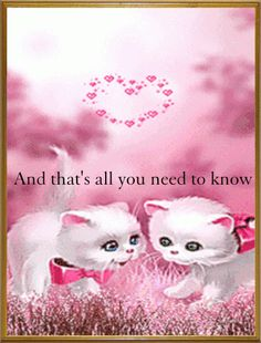Animation - Thanks to Ashaley Lenora for sending me these pretty-in-pink sweet kitties. Gifs, Animals And Pets, Cute Animals, Image Chat, Beautiful Gif, Animation, Gif Pictures, Live Wallpapers, Cat Gif