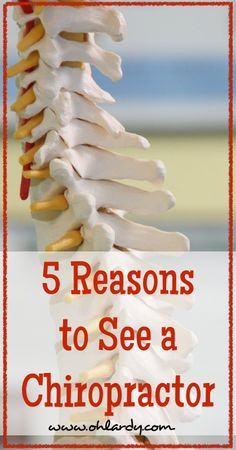 An Interview with a Chiropractor: 5 Reasons to Get Your Spine Checked - Oh Lardy!