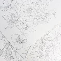 My stride... #cuttinggarden #artist #mockorange #drawing #sketch #illustrations #onebooktwobooks #flowers #fleurs #breathe